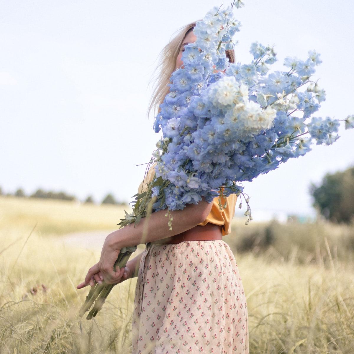 bouquet fleurs été champs