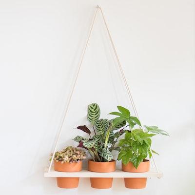 Triangle suspendu avec son assortiment de plantes