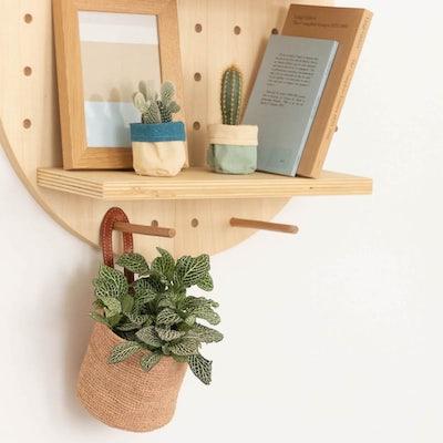Pegboard + cactus + plante verte - Etagère modulable (vendue avec 3 cactus et 1 Fittonia ainsi que leurs cache-pots)