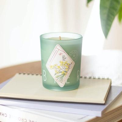 Kerze Fleur de Mimosa