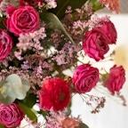 Zoom Bouquet Palawan