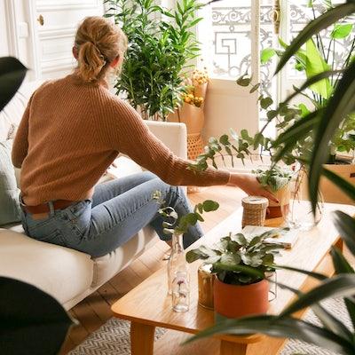 Frau sitzt in ihrem Wohnzimmer mit vielen Pflanzen