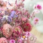 Bouquet Sainte-Baume