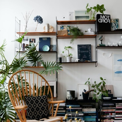 Room decorated with plants
