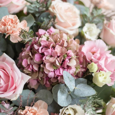 Nahaufnahme Blumenstrauß Coromandel