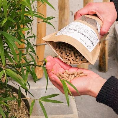 arroser-plante-exterieur