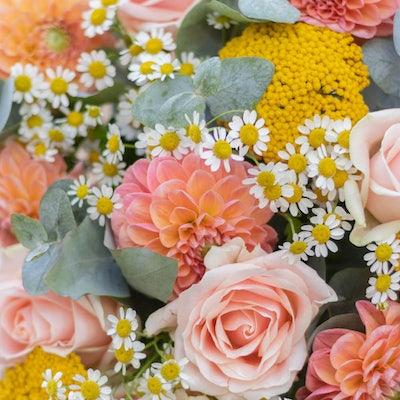 Nahaufnahme Blumenstrauß Ramatuelle