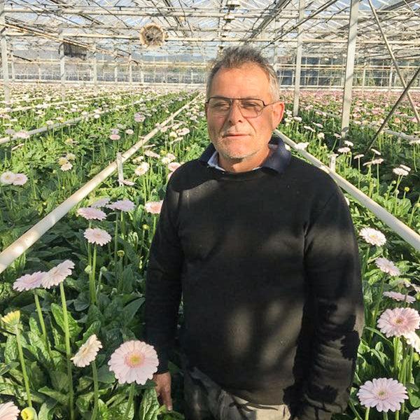 Un de nos producteurs de fleurs dans sa serre