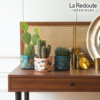 Diego - Cactus avec cache-pot La Redoute Intérieurs