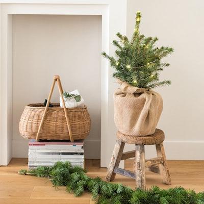 Edgar - Mini-Weihnachtsbaum