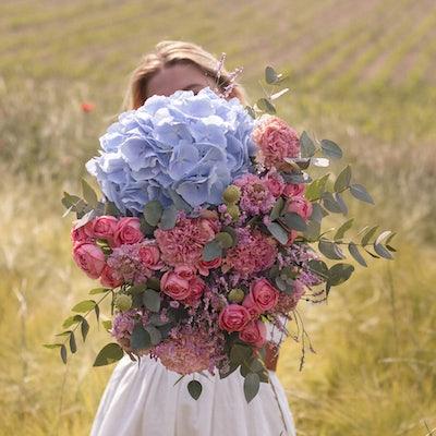Bouquet d'hortensia dans un champs