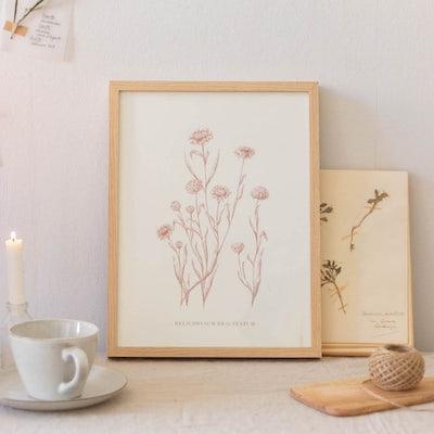 Grand cadre Helichrysum