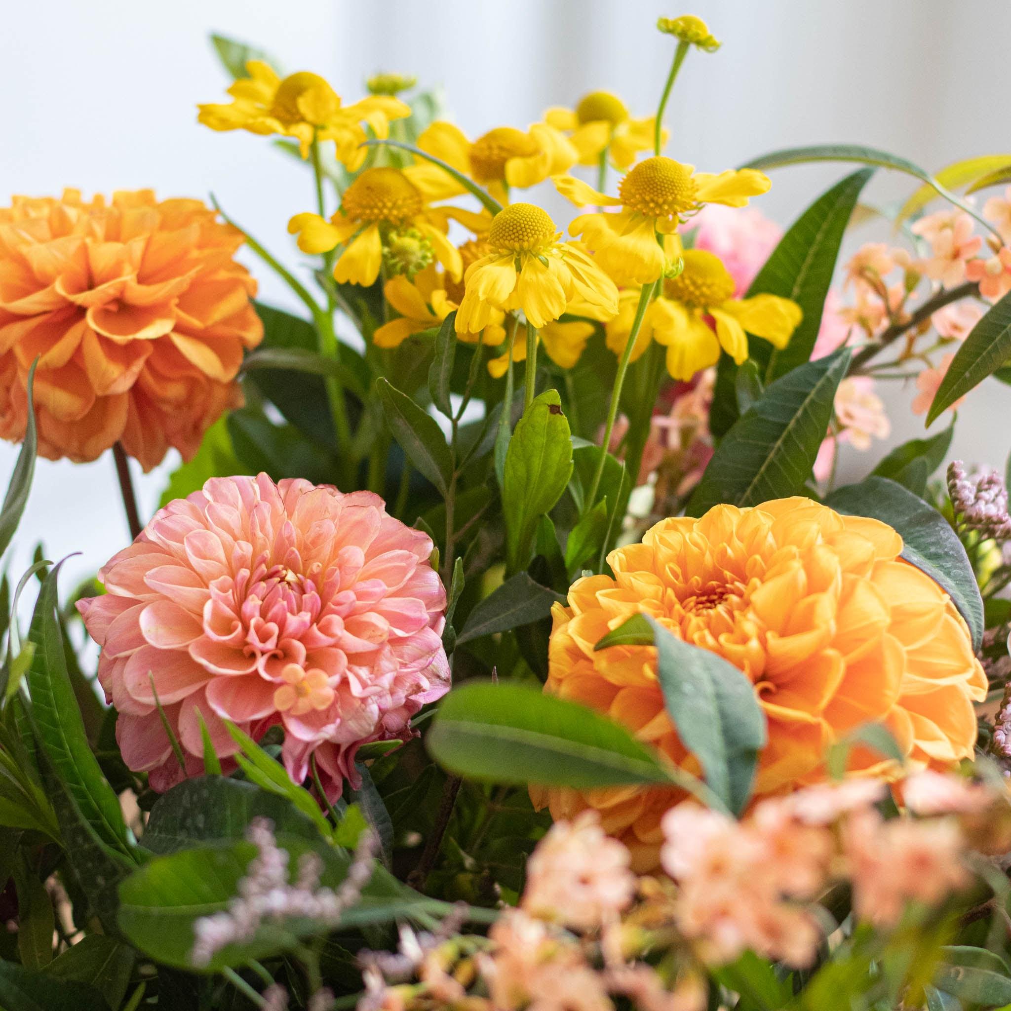Le Bouquet de Chloé