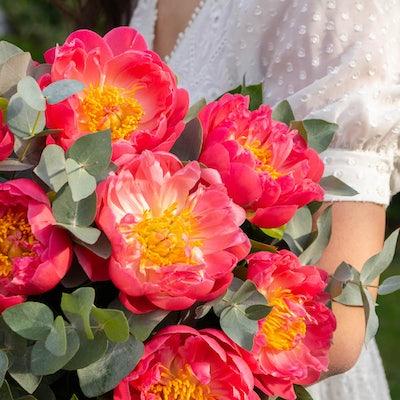 Bouquet Hyères Zoom