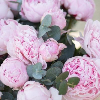 Nahaufnahme unseres Guérande + Blumenstraußes