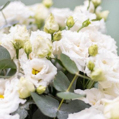Nahaufnahme unseres Versailles+ Blumenstraußes