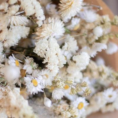 """Nahaufnahme der Blüten unseres Straußes """"Bishop Rock"""""""