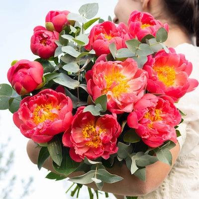 Unser Hyères Blumenstrauß