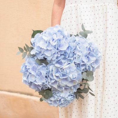 Bouquet de fleurs hortensias bouquet monochrome
