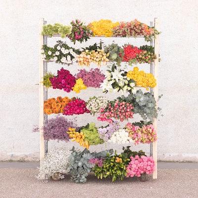 fleurs-fete-des-grands-meres