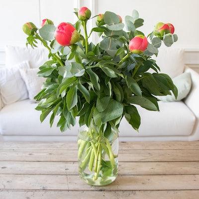 Brassée à composer Île de Ré à réception, avant éclosion, dans son vase Le Parfait XL parfaitement adapté.