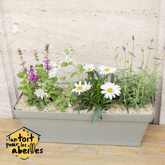Jardinière pour les abeilles