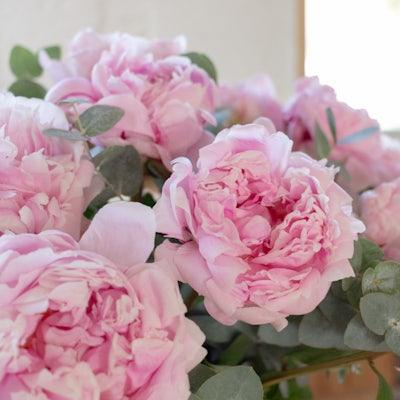 Blumenstrauß Guérande+