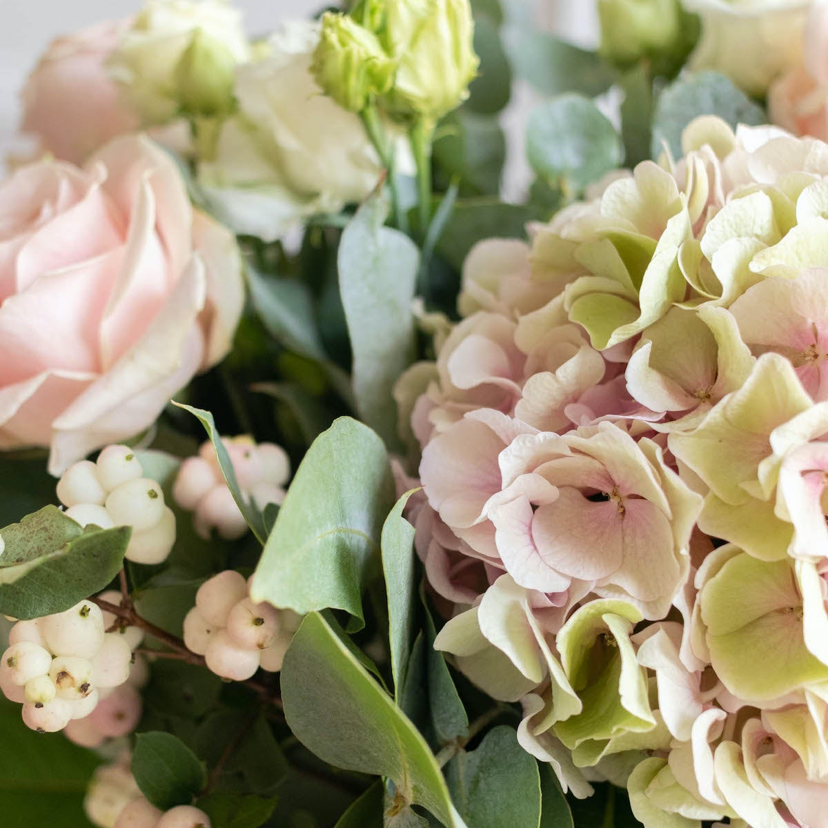 Bouquet Ottawa